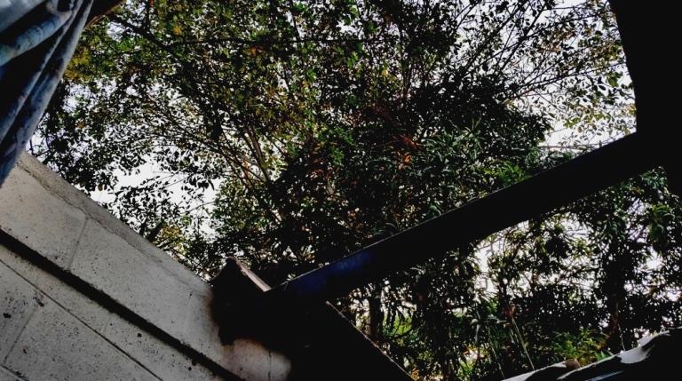 Foto D1. Salvador Sagastizado. Así quedó el techo de la vivienda tras la explosión de la granada.
