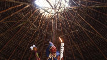 AMAZONAS OLIMPICO 3