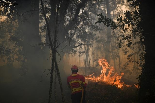 Foto AFP.D1