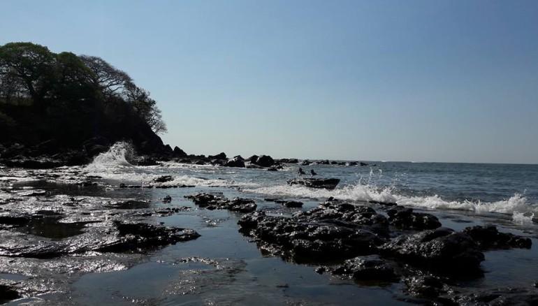 Imagen de playa Los Cóbanos