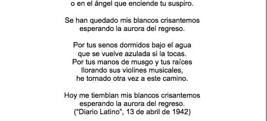Poema 8s