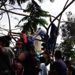 Algunos salvadoreños subieron a los árboles para tener una mejor vista. Foto D1/ César Méndez Madrid