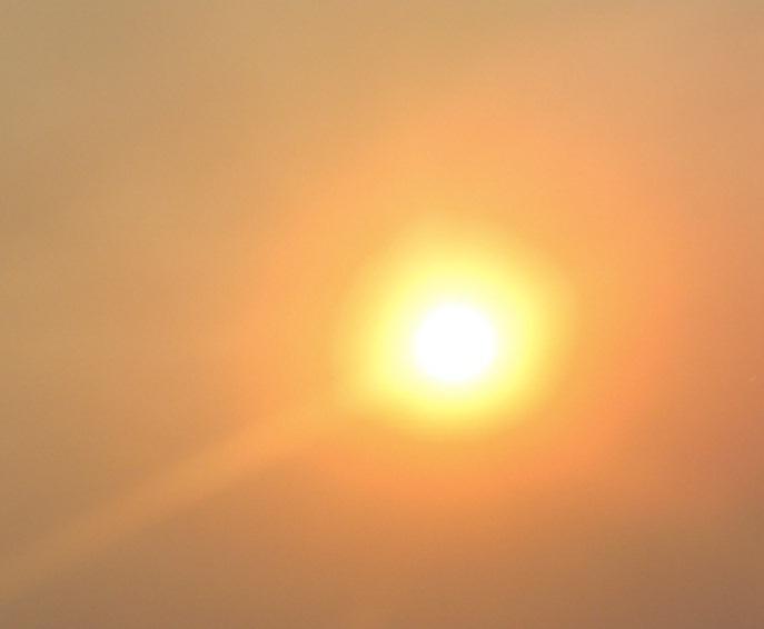 El sol 5