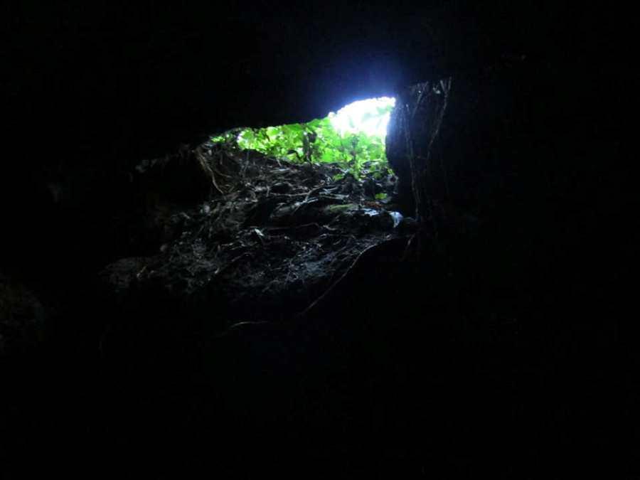 Cueva 2