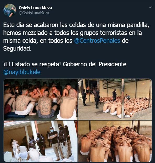 Bukele autoriza a la Policía matar a los pandilleros de El Salvador