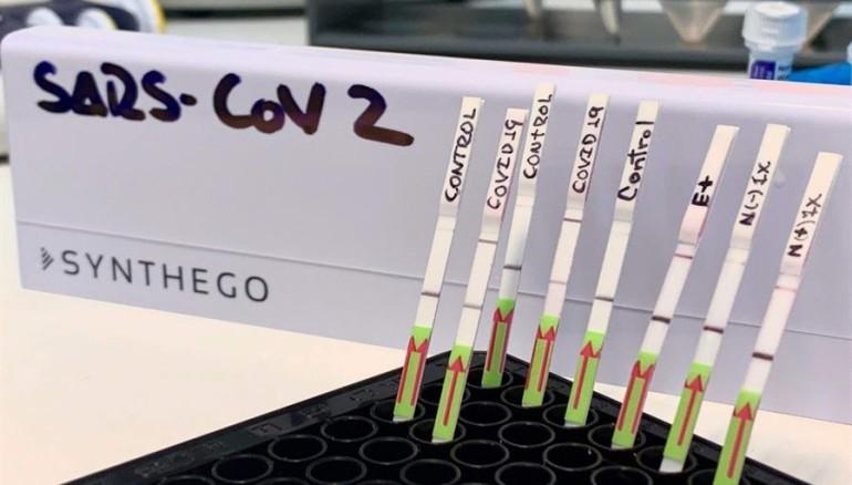 Fotografía de archivo fechada el pasado 22 de junio muestra algunas pruebas moleculares rápidas para covid-19, en Lima (Perú). Inmerso en una gran crisis sanitaria y económica por el impacto de la COVID-19, Perú ha decidido afrontar el desafío de la pandemia con propuestas e ideas innovadoras de su comunidad científica, dispuesta a demostrar que puede estar a la vanguardia de las más desarrolladas del mundo. EFE/ Edward Málaga-trillo.