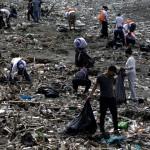 Voluntarios recogen basura durante una jornada de limpieza de playas hoy, en Ciudad de Panamá. /EFE